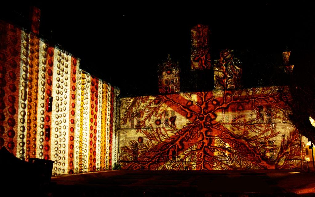 Lumière de Verre - Musée Labenche - Brive-la-Gaillarde